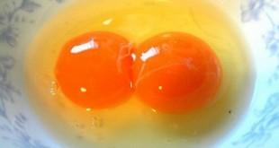 تخم مرغ دوزرده